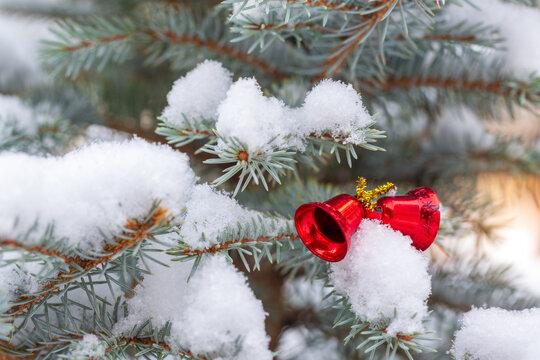 Red Christmas decor bells on snowy fir tree