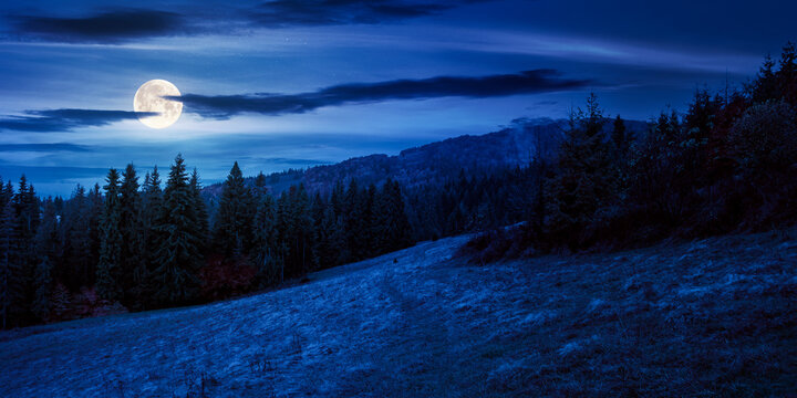 autumn scenery with forest on the hill at night. beautiful mountain landscape in full moon light. cloudy weather. explore back country concept