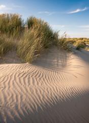 dutch wadden islands have many deserted sand dunes uinder blue summer sky in the netherlands