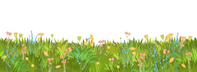 Meadow with wildflowers. Seamless illustration. Grass close-up. Green summer landscape. Rural pasture. Cartoon style. Flat design. Flowers. Isolated on white background. Vector art
