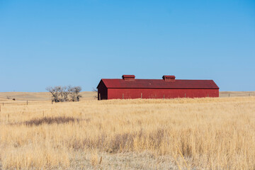 Red Barn On A Dry Field With Blue Sky