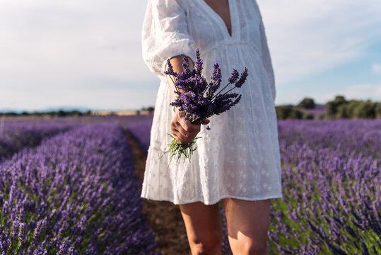 Unrecognizable pregnant woman showing a bouquet of lavender flowers