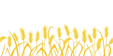Cartoon farm field background with golden wheat spikes. Agriculture cereal crop ears. Rural scene with grain harvest vector border pattern