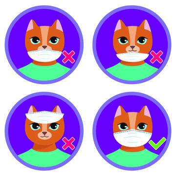 the cute c oon cat shows how to wear face mask properly wrong and vector design vector illustration print poster wall art canvas