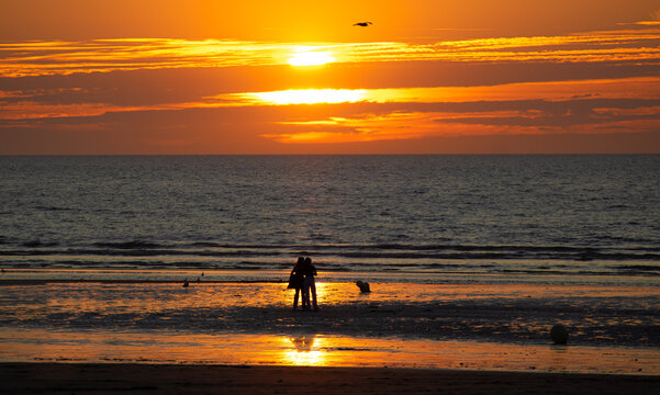 silhouettes of two women from behind watching a yellow and orange sunset behind the sea, love between two people. silhouettes de deux femmes de dos regardant un coucher de soleil jaune plage