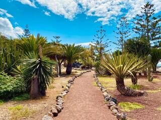 Obraz path in the park - fototapety do salonu
