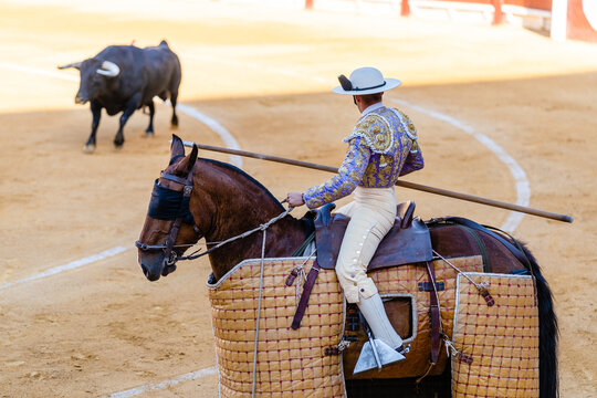 Bullfighter on horse performing on arena with bull