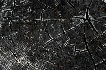 black burnt wood texture surface