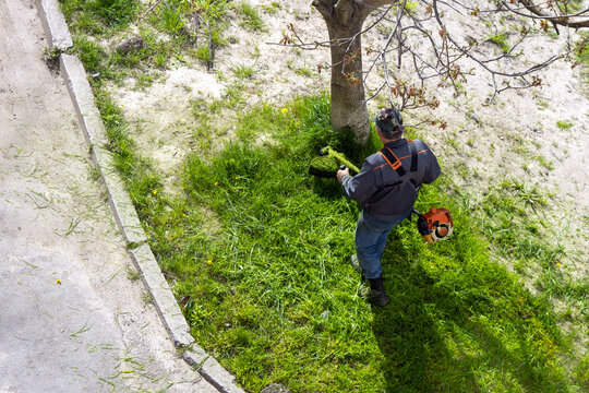 The gardener cuts the grass with a hand-held electric lawn mower.