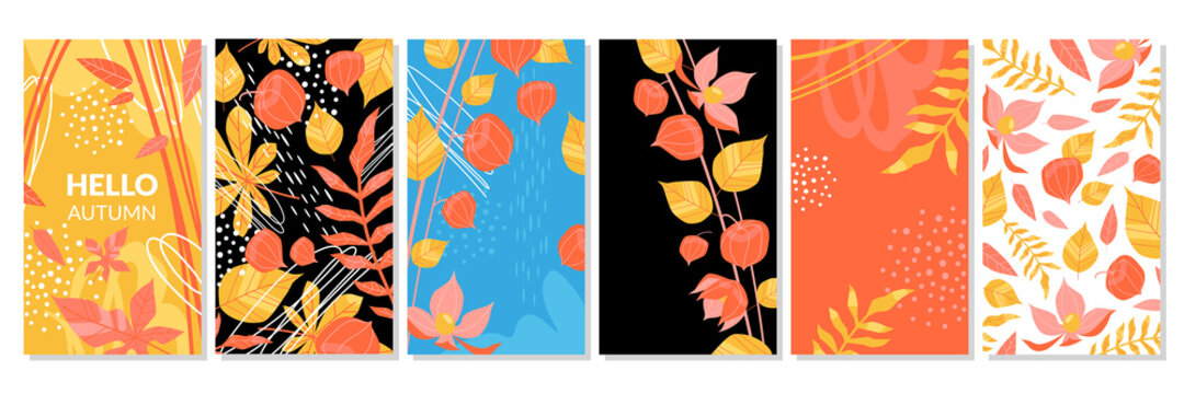 Hello autumn set of vector social media banners or covers with floral elements. Branches, leaves, physalis fruits and hand drawn elements
