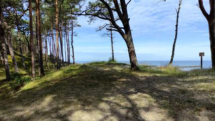 Morze Bałtyckie. Polska. Wydmy.