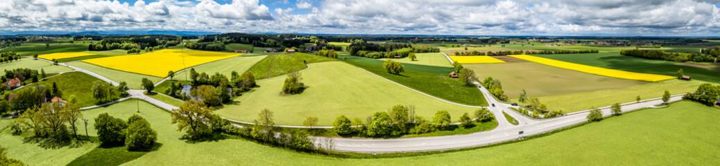 nice field - landscape