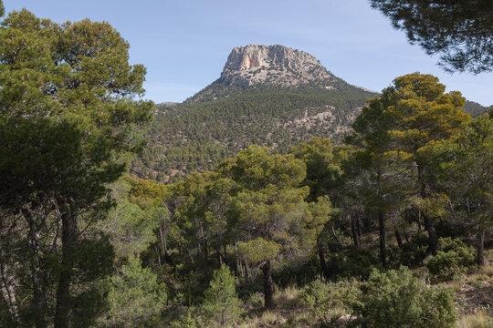 Scenic view of peak Morron de Espuna in Sierra Espuna national park, Totana district, Murcia, Spain