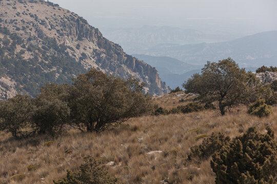 Mountain region in Sierra Espuna national park, Totana district, Murcia, Spain