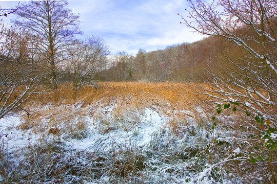 france,île de france,vallée de chevreuse : campagne sous la neige