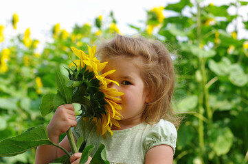 girl and sunflower on the field