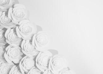 Fototapeta Tło róże obraz