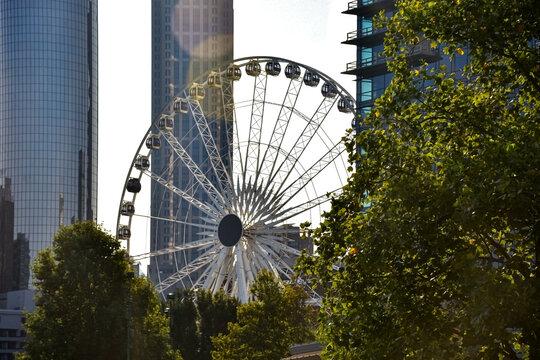 ferris wheel in downtown Atlanta