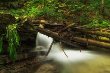 Potok Białej Wisełki , Kaskady Rodła