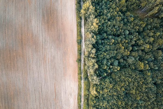 Aerial top down drone shot of rural countryside road between crop field and forest