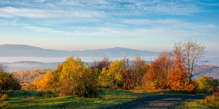 autumnal countryside of carpathian mountains. road in the top of a hill. trees in bright yellow foliage along the way in morning light. foggy valley in the distance. sunny weather with clouds