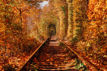 love tunnel in autumn. a railway in the spring forest
