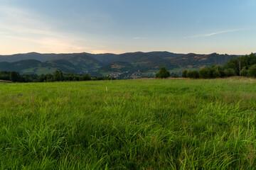 Obraz trawa na górskiej łące - fototapety do salonu