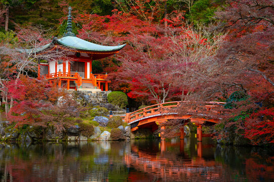 Beautiful view of Daigo-ji temple with red maple trees in autumn season in Kyoto, Japan