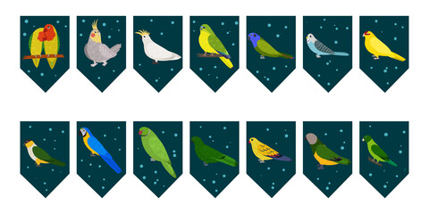 Obraz Flags garland for birthday party with tropical birds on colorful dark green background. Bunting wit lovebird cockatiel cockatoo macaw parrots. Hand drawn kid illustration. Vector design set. - fototapety do salonu