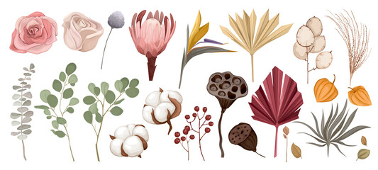 Fototapeta Dried Flowers Icon Set obraz