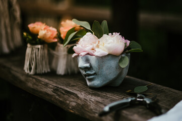 piwonie doniczka głowa ogród dekoracka
