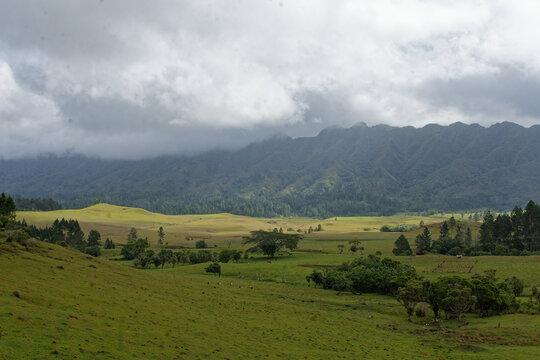 plateau de Toovi - nuku hiva - iles marquises