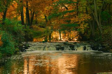 Fototapeta Wodospad na małej rzece w jesienny wieczór. Światło zachodzącego słońca nadaje wodzie czerwone zabarwienie. obraz