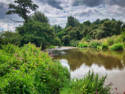 The River Otter in Ottery St Mary