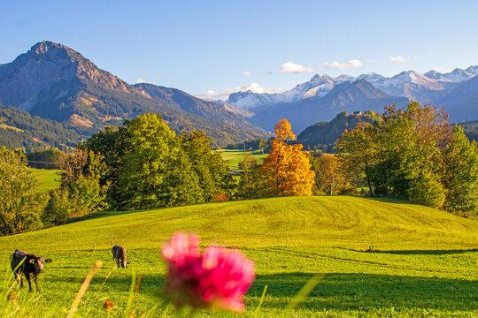 Malerwinkel - Altstädten - Allgäu - Herbst - Alpen - Panorama