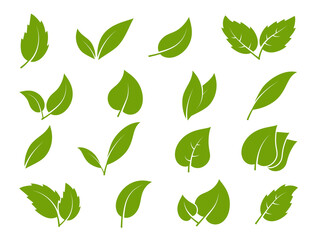 Obraz Leaves icons. Young green leaves trees and plants various shapes, herbal tea leaf eco, bio foliage landscaping environment vector set - fototapety do salonu