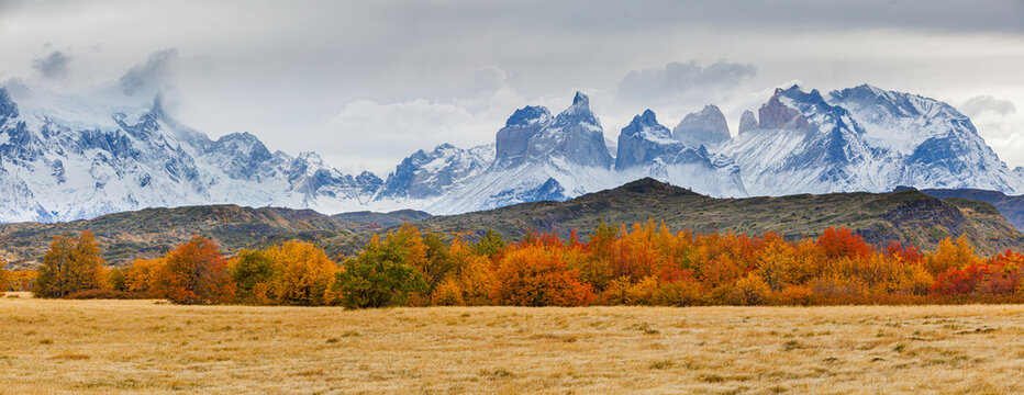 Panoramic image of an autumn landscape in the mountains: the Paine mountain range with the jagged peaks of Los Cuernos in southern Chile
