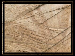 Drewno z czarną ramką