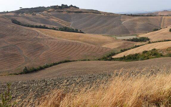 Monochrome Landschaft der Crete Senesi
