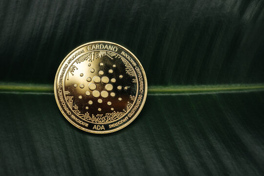 Cardano Ada cryptocurrency coin close-up on a plant leaf