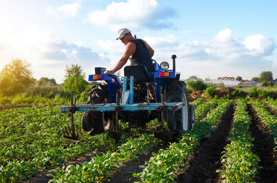 The farmer works in the field with a tractor. Agroindustry and agribusiness. Farming machinery. Plowing and loosening ground. Crop care, soil quality improvement. Farm field work cultivation.