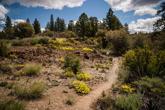 Trail through the volcanic wilderness in Lava Beds national monument