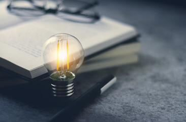 Bright lamp or glowing light bulb with book or textbook.