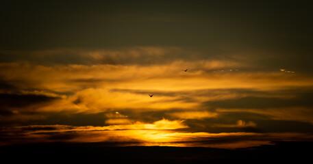 Fototapeta Przepiękny zachód słońca na tle ognistych chmur i dwóch odlatujących ptaków obraz