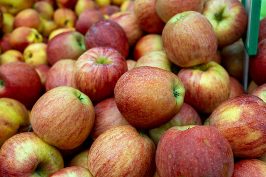 Green red new apples for sale at city market