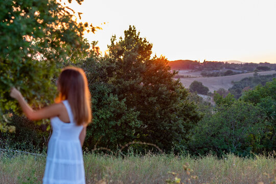 Blurred sunset profile of a young girl with long blonde hair dressed in white as she touches the leaves of the magic tree