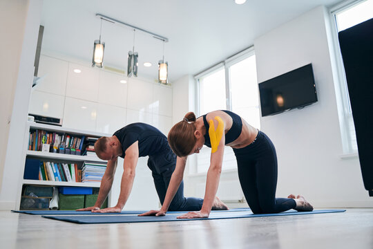 Young pretty elegant female and neat male practicing cat yoga pose in modern studio