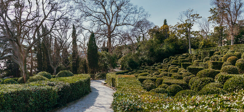 Garden path on the slope surrounded by well-groomed bushes