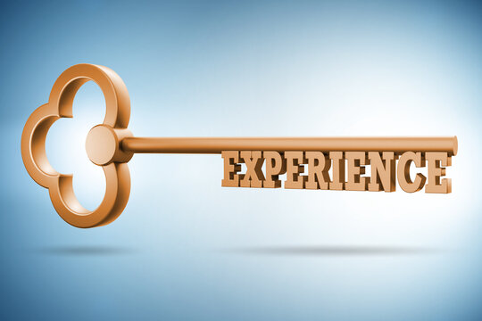 Experience and competence concept with key - 3d rendering