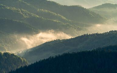 Dolina Potoku Czercz w porannych mgłach, Piwniczna Zdrój, lato, widok z Eliaszówki w Beskidzie Sądeckim